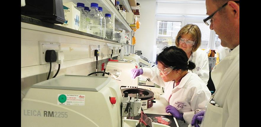 General lab image